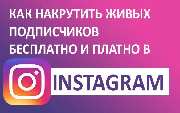 Как накрутить живых подписчиков бесплатно и платно в Instagram